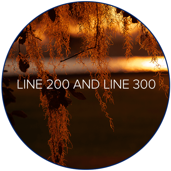 Line 200 and Line 300